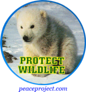 Protect Wildlife - Button