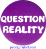 B363 - Question Reality - Button