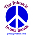 B253 - The Future Is In Our Hands - Button