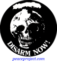 Disarm Now - Button