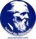 B362 - Defend The Wilderness - John Muir - Button