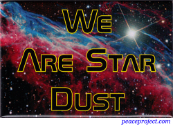 We Are Star Dust - Magnet