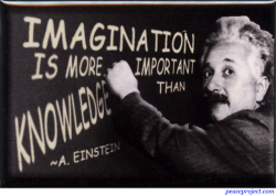 Imagination is More Important than Knowledge - Einstein - Rectangular Magnet