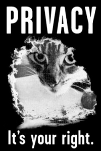 Privacy Is A Right - Postcard