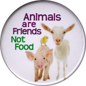 B1219 Animals are Friends Not Food - Button