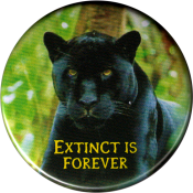 "Extinct is Forever (with panther) - Button / Pinback (1.75"")"