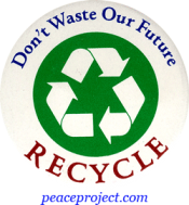 B249 - Don't Waste Our Future, Recycle - Button