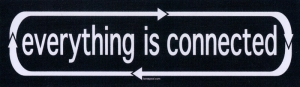 "Everything is Connected - Bumper Sticker / Decal (9"" X 2.5"")"