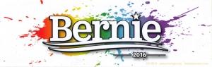 """Bernie 2016 - Bumper Sticker / Decal (9.5"""" X 3"""")"""