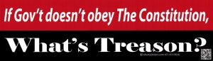 If Gov't Doesn't Obey the Constitution, What's Treason? - Bumper Sticker / Decal