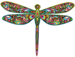 "Dragonfly - Bumper Sticker / Decal (5"" X 4"")"