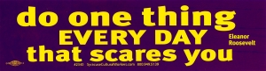 Do One Thing Every Day that Scares You ~ Eleanor Roosevelt - Bumper Sticker