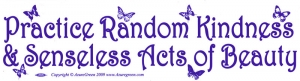 Practice Random Kindness and Senseless Acts of Beauty - Bumper Sticker / Decal
