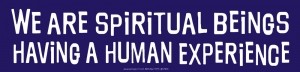 We Are Spiritual Beings Having a Human Experience - Bumper Sticker / Decal