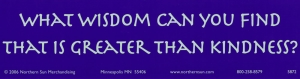 What Wisdom Can You Find That Is Greater Than Kindness? - Bumper Sticker / Decal