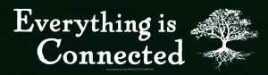 "Everything is Connected - Bumper Sticker / Decal (9.75"" X 2.75"")"