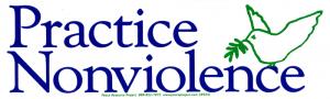 "S054 - Practice  Nonviolence - Bumper Sticker / Decal (10"" X 3"")"