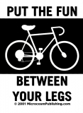 """Put the Fun Between Your Legs - Small Bumper Sticker / Decal (3"""" X 4"""")"""