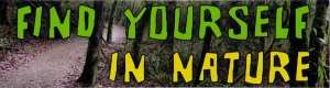 "Find Yourself in Nature - Small Bumper Sticker / Decal (5.5"" X 1.5"")"