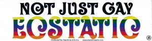 "Not Just Gay, Ecstatic - Small Bumper Sticker / Decal (5.5"" X 1.75"")"