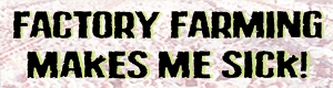 "Factory Farming Makes Me Sick - Small Bumper Sticker / Decal (5.5"" X 1.5"")"
