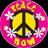 "Daisy Peace Now - Bumper Sticker / Decal (4.5"" X 4.5"")"
