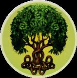 Celtic Tree - Bumper Sticker / Decal