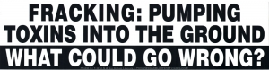 Fracking: Pumping Toxins into the Ground. What Could Go Wrong? - Bumper Sticker