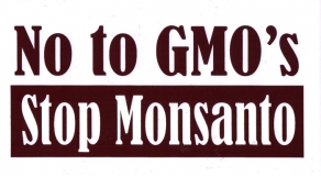 "No to GMO's - Stop Monsanto - Bumper Sticker / Decal (6.5"" X 3.25"")"