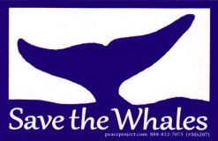 "Save The Whales - Small Bumper Sticker / Decal (4"" X 2.5"")"