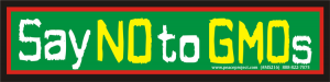 "Say No to GMOs - Small Bumper Sticker / Decal (6.5"" X 1.5"")"
