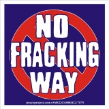 "No Fracking Way - Small Bumper Sticker / Decal (3.5"" X 3.5"")"