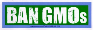 "BAN GMOs - Small Bumper Sticker / Decal (4.75"" X 1.5"")"