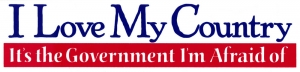 I Love My Country, It's the Government I'm Afraid Of - Small Bumper Sticker / De