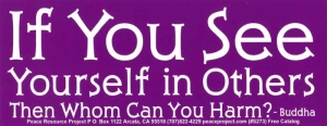 S273 - If You See Yourself in Others Then Whom Can You Harm - Bumper Sticker