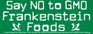 "Say No To GMO Frankenstein Foods - Bumper Sticker / Decal (8.25"" X 3.25"")"