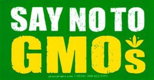 "Say No To GMOs - Bumper Sticker / Decal (5.25"" X 2.75"")"