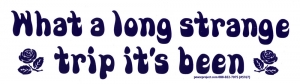 What A Long Strange Trip It's Been - Grateful Dead - Bumper Sticker / Decal (8.5