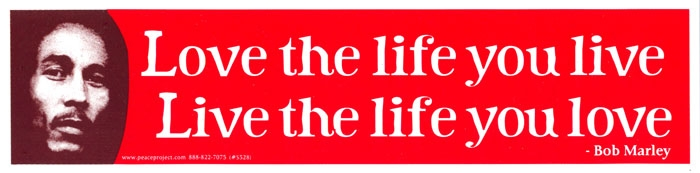 Live The Life You Love Love The Life You Live Bob Marley Bumper