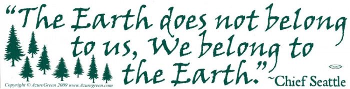 The earth does not belong to us we belong to the earth chief seattle