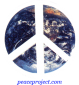 B594 - Peace Sign over Earth - Button