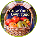 Organic farming / Food