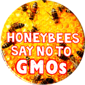 "Honeybees Say No To GMOs - Button / Pinback (1.75"")"