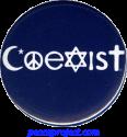 B979 - Coexist - Button