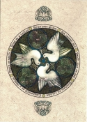 Celtic Doves - Greeting Card