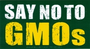 Say No to GMO - Bumper Stickers / Decal