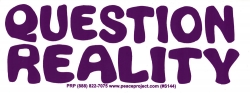 "Question Reality - Bumper Sticker / Decal (8"" X 3"")"
