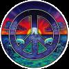 WA008 - Dolphin Peace - Window Sticker