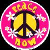 WA163 - Daisy Peace Now - Window Sticker