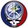 "Steal Your Peace - Grateful Dead - Window Sticker / Decal (5"" Circular)"